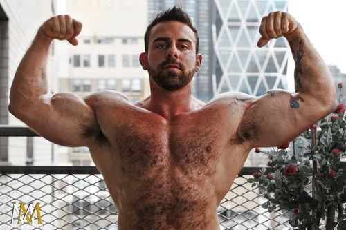 Manifestmen_hairy_bodybuilder